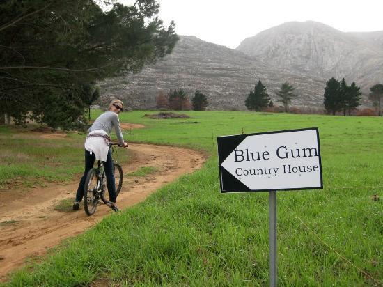 Blue Gum Country Estate: Blue Gum cycle route