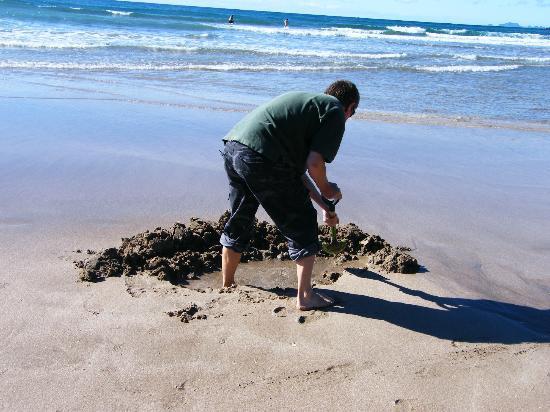แปซิฟิก ฮาร์เบอร์ ลอดจ์: Digging my 'spa pool' on hot water beach