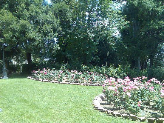 Aiuole di rose foto di giardino bardini firenze - Giardino con rose ...