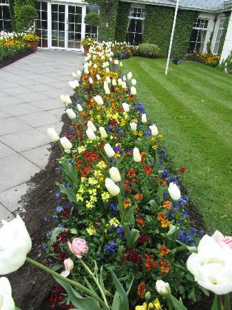 The Keadeen Hotel: Flowers leading to the entrance