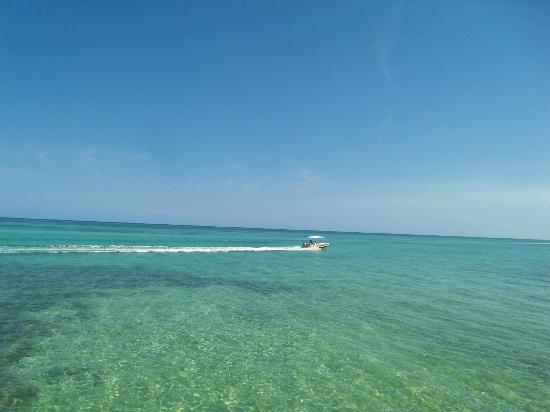 Grand Caribe Belize Resort and Condominiums: Beach