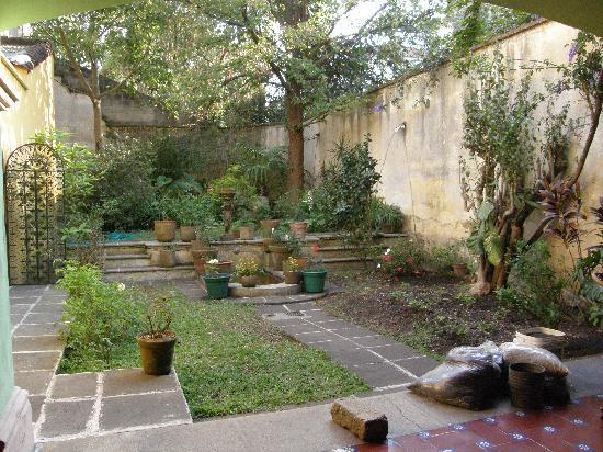 Casa Carmel: giardino