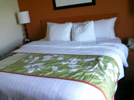 Fairfield Inn & Suites Youngstown Austintown : Classy bedding