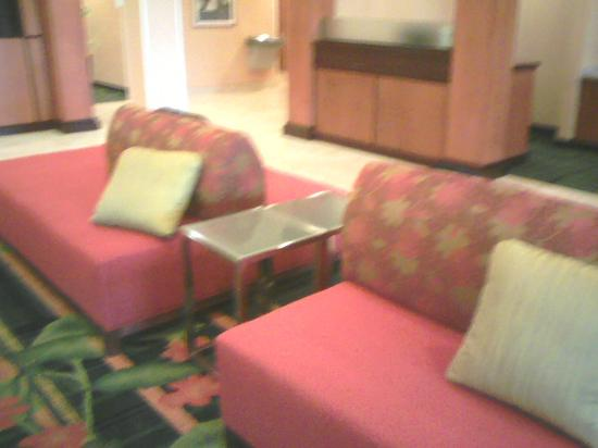 Fairfield Inn & Suites Youngstown Austintown: Awesome lobby!