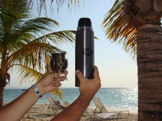 Luxury Bahia Principe Cayo Levantado Don Pablo Collection: Los compañeros de siempre...yerba conseguis en los super mas importante en Samana al menos