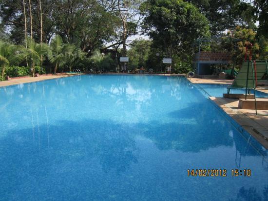 Clean Swimming Pool - Picture of Srushti Farms, Thane ...