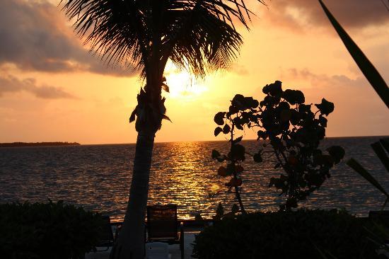 Turneffe Island Resort : Sunrise