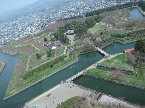 Goryokaku Park: 展望台より
