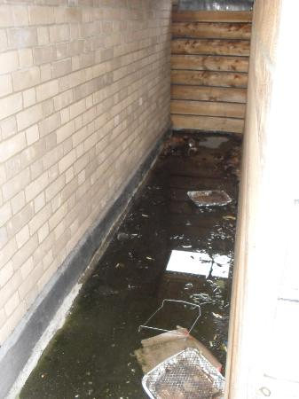 The Beeches Apartments: Apartment 9F - rubbish on wraparound balcony area