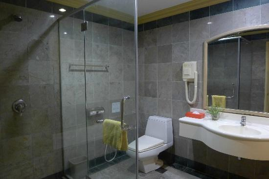 Grand DarulMakmur Hotel Kuantan: Shower stand, WC, and sink