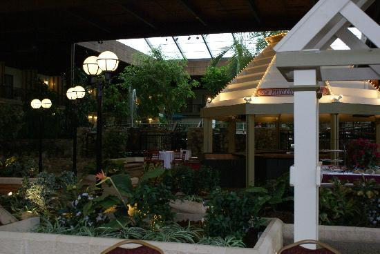 Boxboro Regency Hotel & Conference Center: Atrium