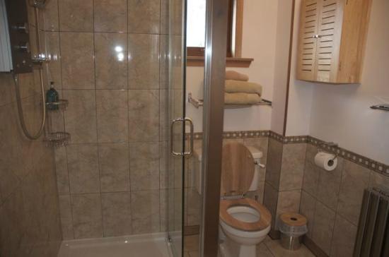Ardenlea: Shower room