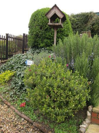 Myrtle House Holiday Accomodation: a part of the garden that leads to the back hill, cliff and park