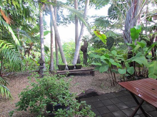 Mai Tai Resort: Garden
