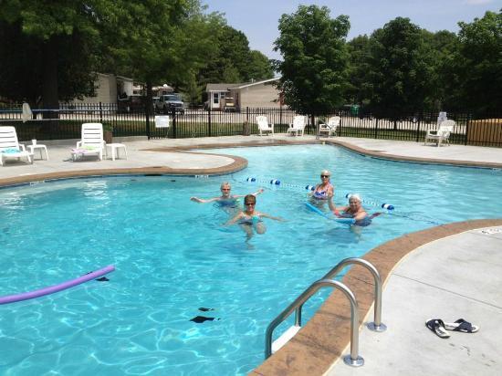 Happy Hollow Resort: friends in pool