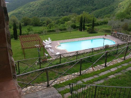 Agriturismo Casa degli Ulivi: veduta della piscina dalla sala ricevimenti