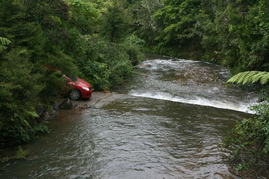 Wairua Lodge - Rainforest River Retreat: on the way there