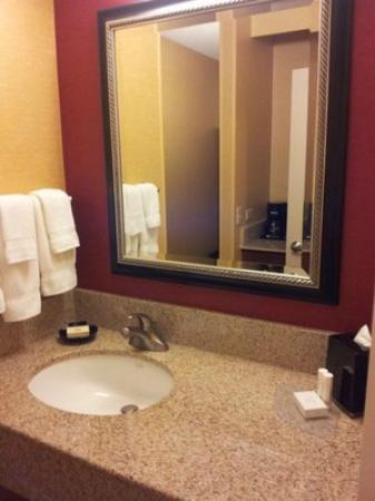 Courtyard by Marriott Laguna Hills Irvine Spectrum/Orange County: Bathroom
