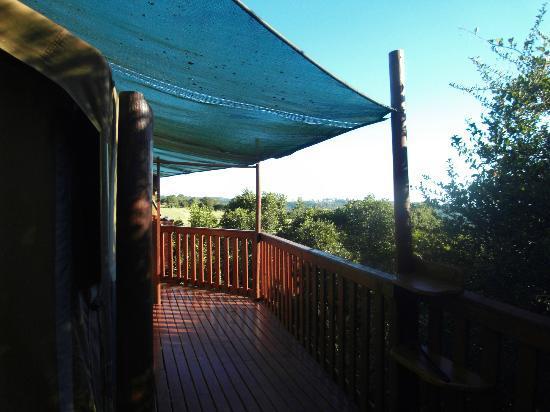 Teniqua Treetops: the veranda
