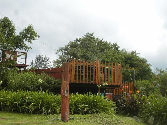 Teniqua Treetops: the pool area