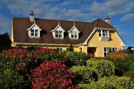 Blarney Vale Bed and Breakfast: House and Garden 2