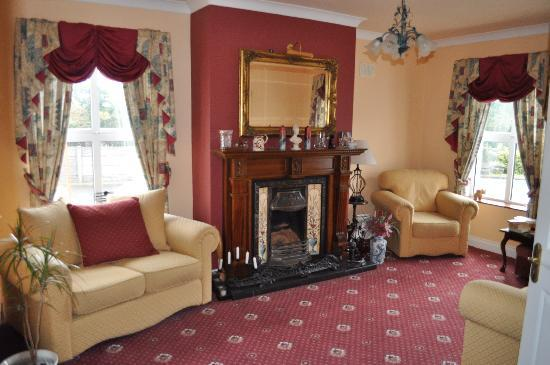 Blarney Vale Bed and Breakfast: Guest Lounge