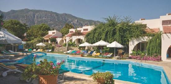 Lapta Holiday Club Hotel: Camellia bungalows set around the Cabana pool
