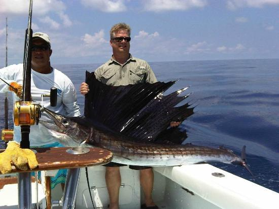 JP Sport Fishing Tours: Nice Sailfish