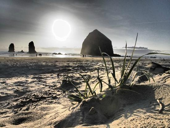 Surfsand Resort: Haystack Rock
