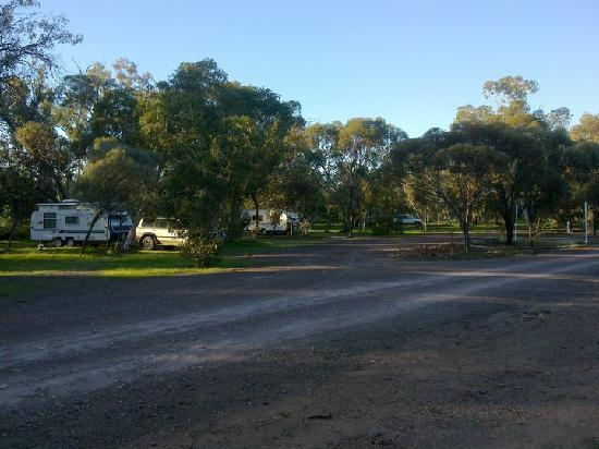 Stony Creek Bush Camp Caravan Park: Spacious camp areas