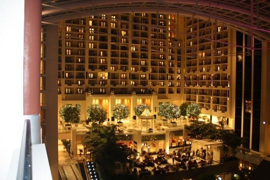 Gaylord National Resort & Convention Center: view from our room