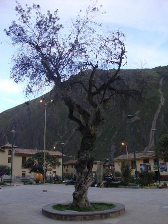 写真Tikawasi Valley Hotel枚