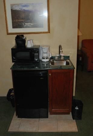 Peterborough Inn & Suites Hotel: Service area in the room