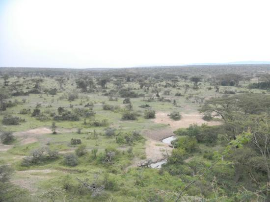 Eagle View, Mara Naboisho : View from dining area