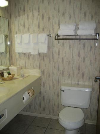 Comfort Inn Zion: Bathroom
