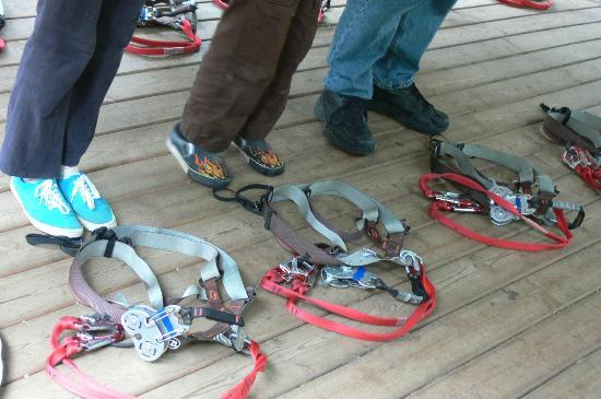 WildPlay Element Parks Nanaimo : Harnesses!!!