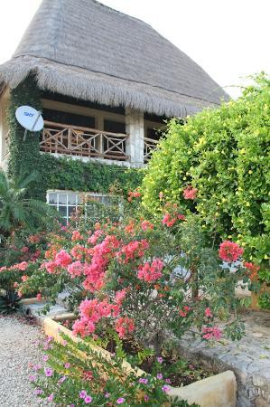 Bacalar Lagoon Resort: Palapa Principal