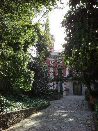 Residencia Salesiana Marti-Codolar: parc2