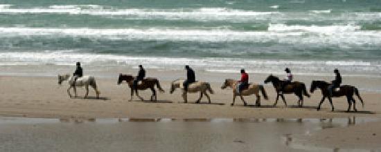 Belmullet, Ιρλανδία: Pony Trekking