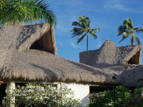 Caribe Club Princess Beach Resort & Spa: Buffet centel El Higüero