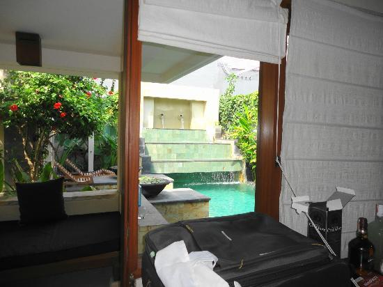 Villa Diana Bali: View from the pool