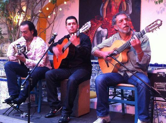 El Campo: Soy, le groupe que l'on vient voir depuis 2010
