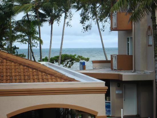 Alassio Palm Cove: view from upstairs