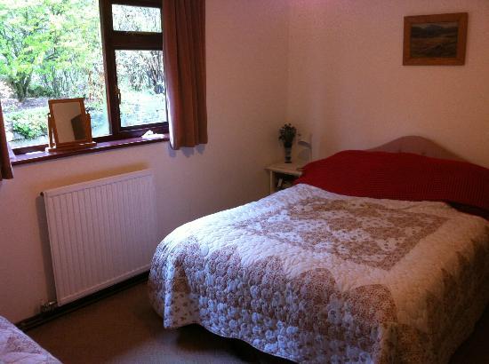 Can-yr-Afon B&B: Downstairs bedroom