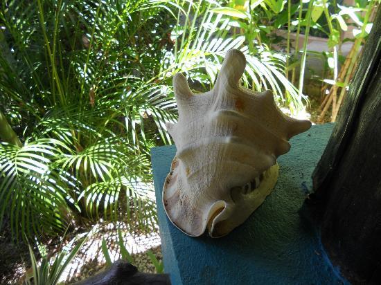 Tuko Beach Resort: decoration