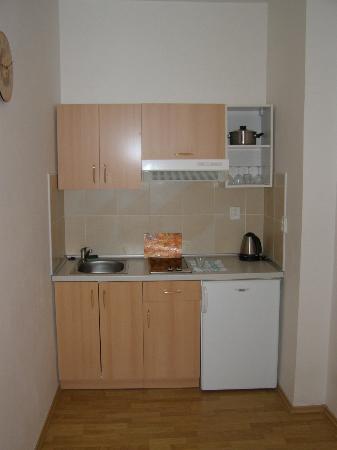 ApartHotel Susa : Kitchen