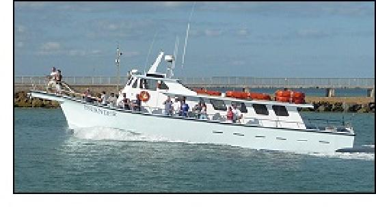 Islander Half-Day Fishing Trips