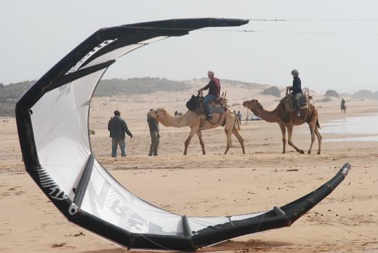 Mogabio : playa essaouira
