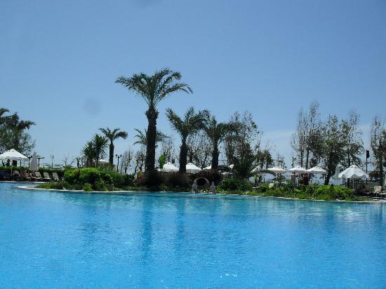 Paloma Grida Resort & Spa: view drom pool