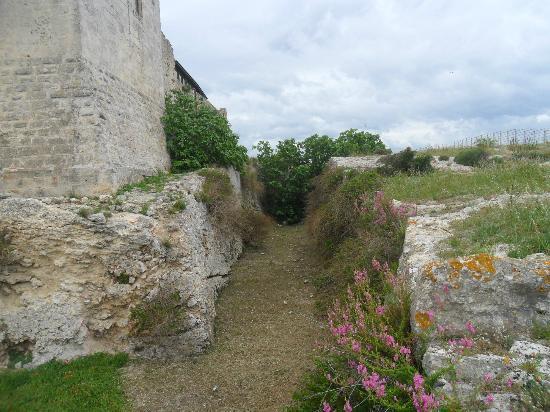 Castello di San Michele : fossato